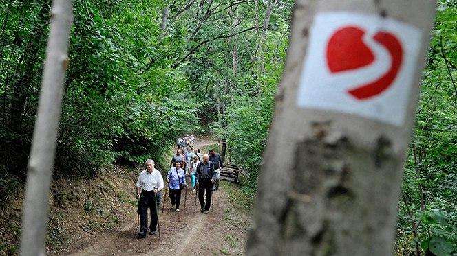 Szívösvény - Fotó: turistamazin.hu