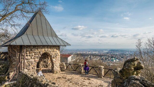 Árpád-kilátó - Fotó: Pilisi Parkerdő